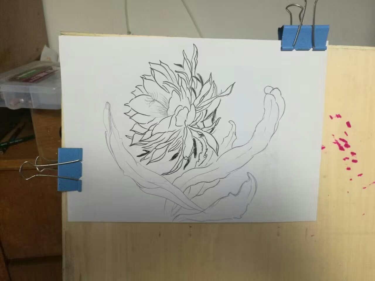 昙花纹身手稿